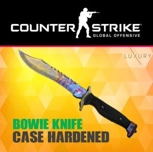 Bowie Knife | Case Hardened