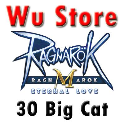 30 Big Cat Coin