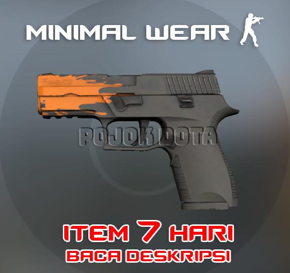 P250 | Splash (Restricted Pistol)