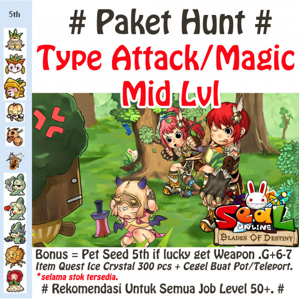 Paket #2 Level Rendah Attack/Magic - All Job