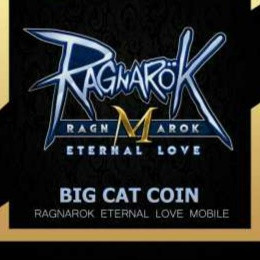 4 Big Cat Coin