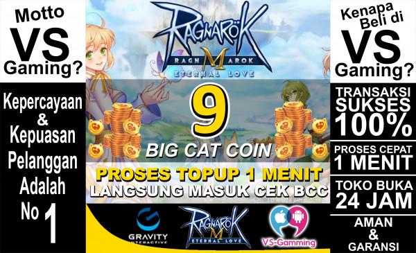 9 Big Cat Coin