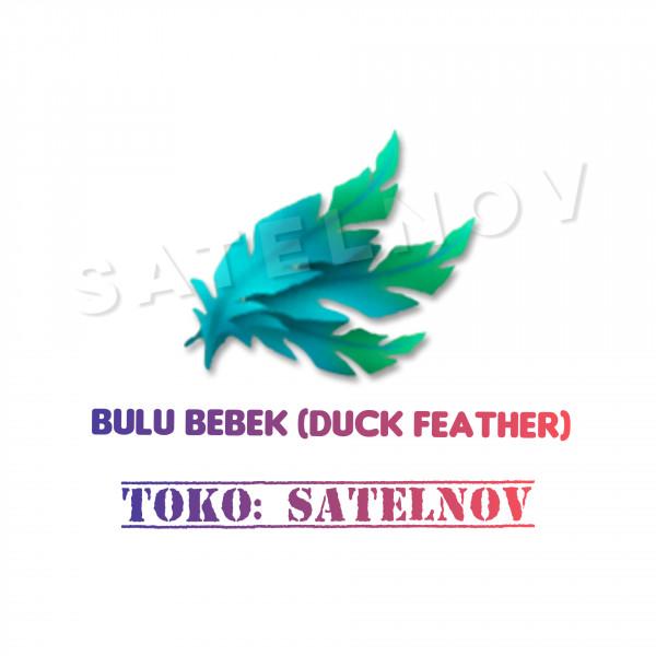 Bulu Bebek (Duck Feather)