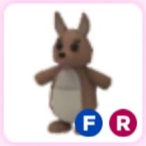 Kangaroo (FR) - AdoptMe