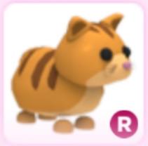 Ginger Cat (R) - AdoptMe