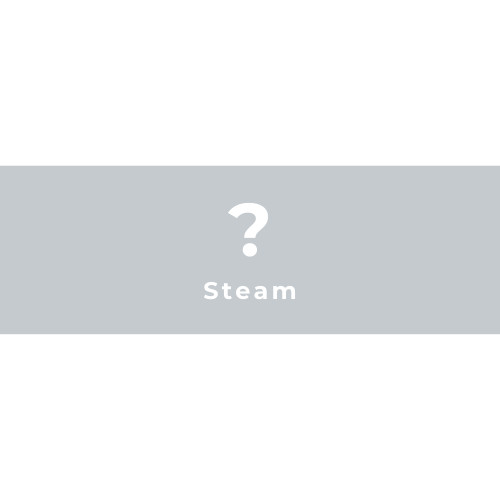 Random Steam Key GLOBAL 1 Key