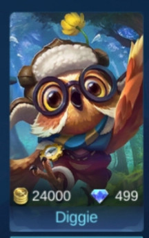 Diggie (Support)