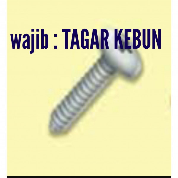 Sekrup / Screw