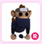 Ninja Monkey R (Cam Ride) Adopt Me