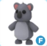 Fly Koala (Teen) | Pets Adopt Me
