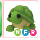 NFR(Neon Fly Ride) Turtle - Adopt Me