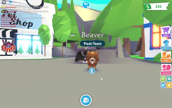 Beaver(Adopt me)