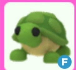 F Turtle Adopt me (Can Fly)