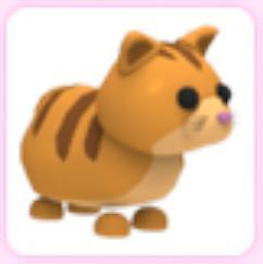 Ginger Cat (Ultra Rare) - Adopt Me