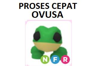 Item Frog Neon Fly Ride Adopt Me Pet Legendary