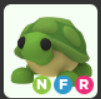 TURTLE NFR(NEON,FLY,RIDE)ADOPTME
