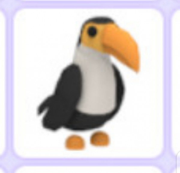 Toucan Pet [Normal/Fly/Ride] Adoptme