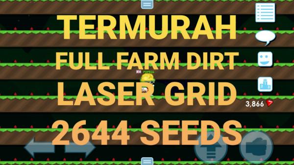 FULL FARM LASER GRID 2644 SEEDS (BELUM SIAP PANEN)