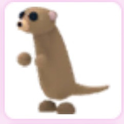 Meerkat FULLGROWN - Adopt Me Pet