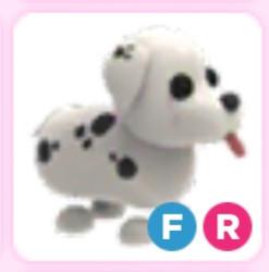 Dalmatian FR Fullgroun