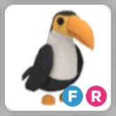Toucan FR | Adopt Me