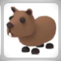 Capybara | Adopt Me