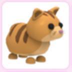 Ginger Cat Adopt Me Pet