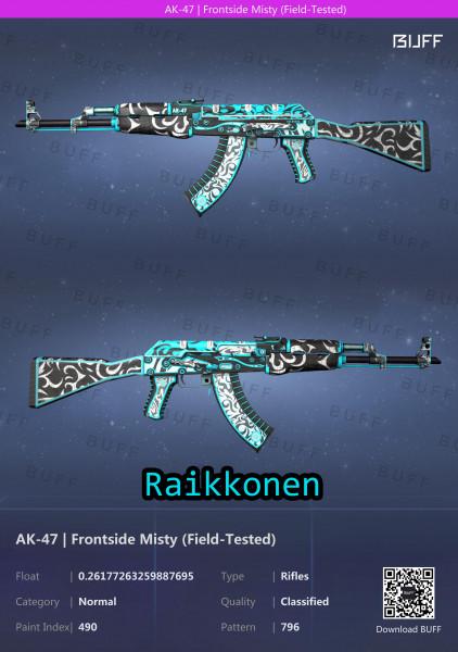AK-47 | Frontside Misty (Classified Rifle)