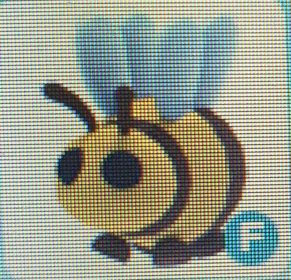 Pet adopt me bee F
