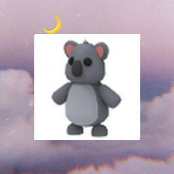 Koala - Adopt Me
