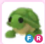 FR Turtle Pet Adotpme