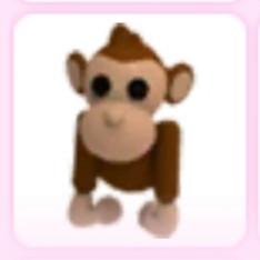 Monkey - Adopt Me