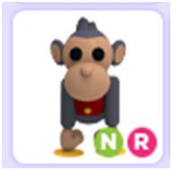 Toy Monkey Neon R Adopt Me