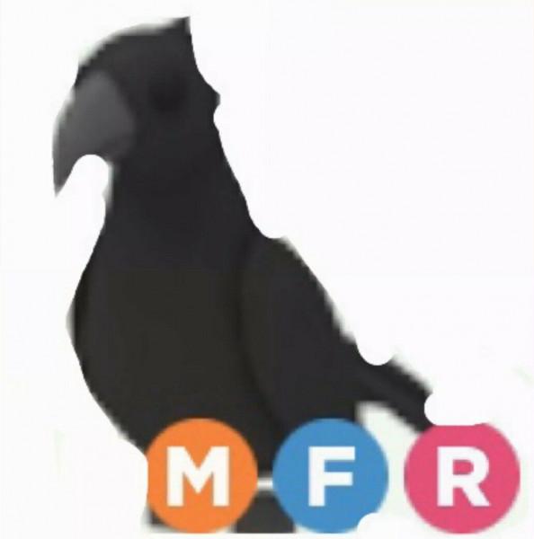 Crow MFR (mega neon fly ride) - Adopt Me