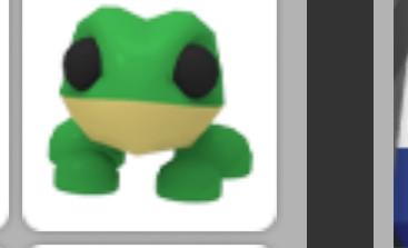 Frog- adopt me