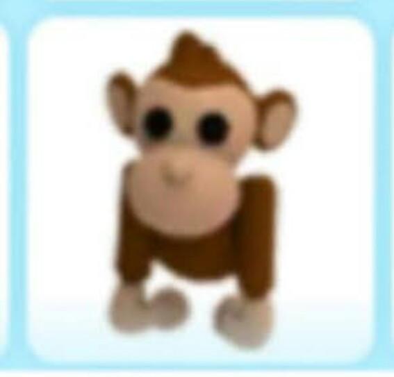 Monkey pet adopt me