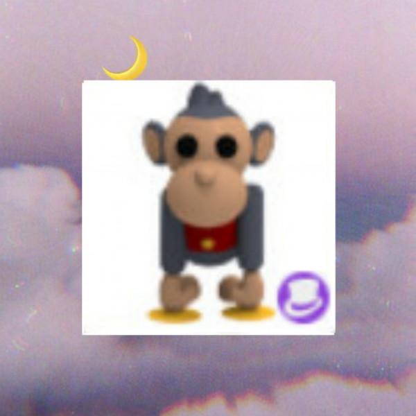 Toy Monkey - Adopt Me