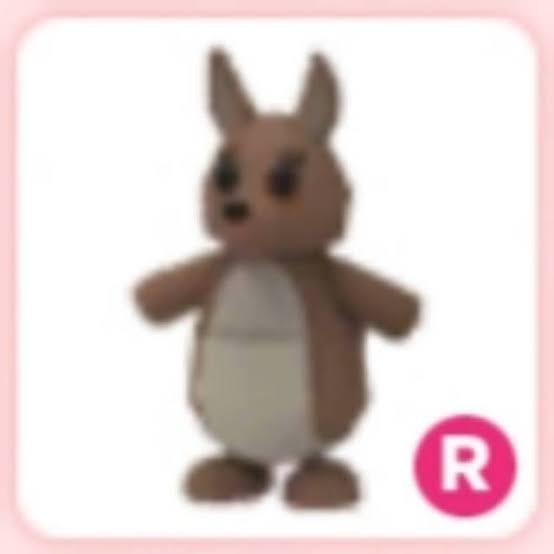 Kangaroo R | Adopt Me