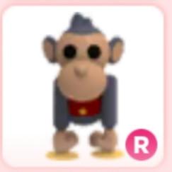 Pets Monkey Boy Adopt Me!
