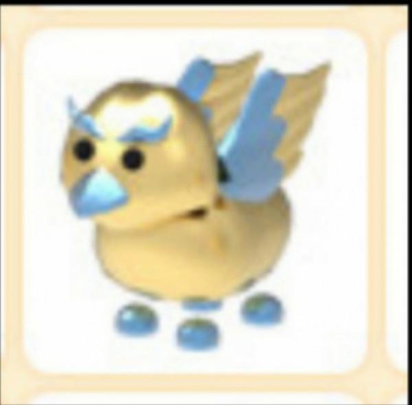 Golden Griffin Pet adoptme