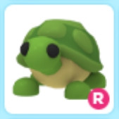 R Turtle - Adopt Me