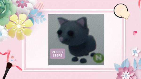 Neon cat normal adopt me