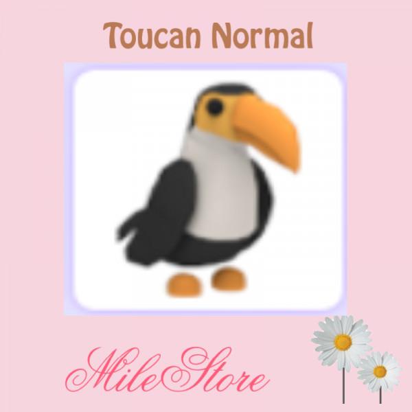 Toucan (Normal) Adopt Me