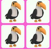 Toucan Normal - Adoptme