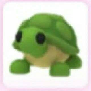Normal Turtle | Adopt Me