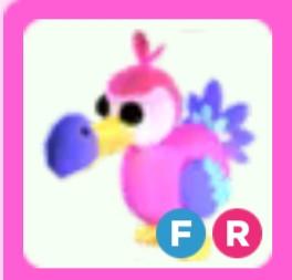 Dodo FR