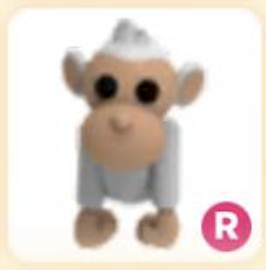 R Ride Albino Monkey Adopt Me