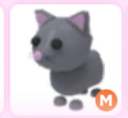 Mega Neon cat|Adoptme