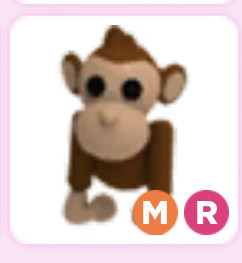 Monkey Mega Ride MR - Adopt Me