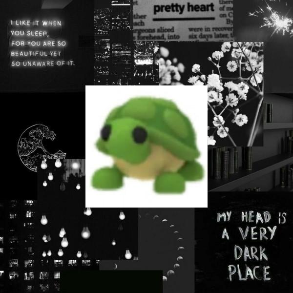 Turtle - Adopt Me